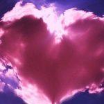Valentine's Day Vegan Gift Guide 2019