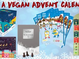 Win A Load Of Vegan Chocolate For Christmas Closed The Hectic Vegan