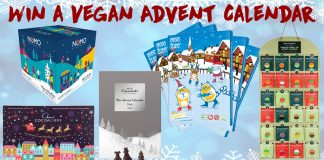 Win a Vegan Advent Calendar The Hectic Vegan